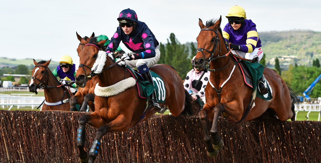 Hunter Chase Evening at Cheltenham Racecourse