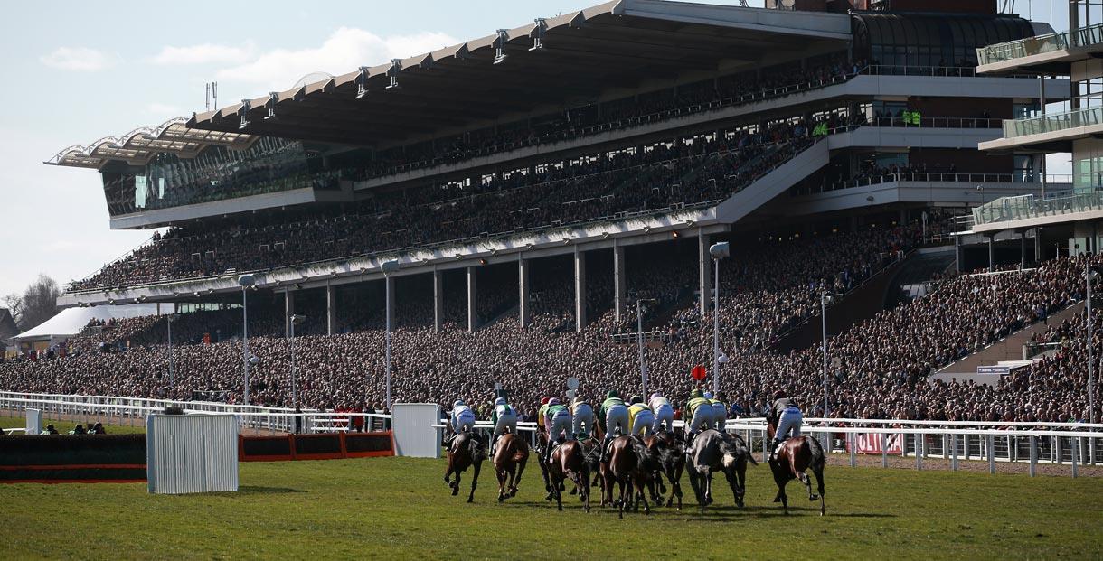 Image result for cheltenham races