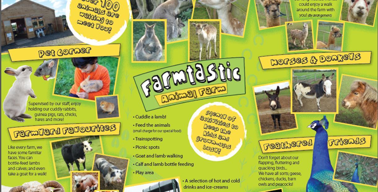 Farmtastic Animal Farm - Chippenham -