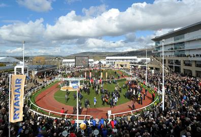 Cheltenham Festival Early Bird Tickets