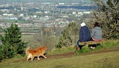 Leckhampton Hill and Charlton Kings Common in Cheltenham