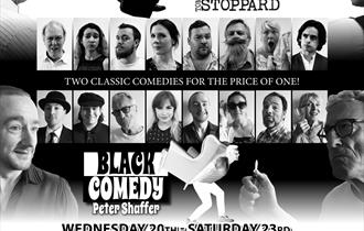 Real Inspector Hound and Black Comedy