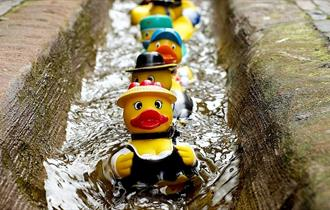 National Rubber Duck Day
